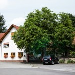 Ein weißes Haus, an dessen Tor ein großer grüner Baum steht.